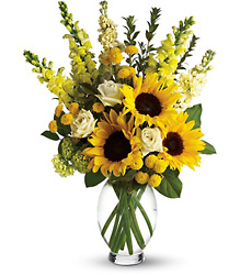 Here Comes The Sun by Teleflora from Designs by Dennis, florist in Kingfisher, OK
