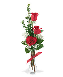 3 Red Roses from Designs by Dennis, florist in Kingfisher, OK