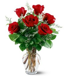 6 Red Roses from Designs by Dennis, florist in Kingfisher, OK