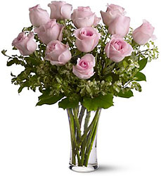 A Dozen Pink Roses from Designs by Dennis, florist in Kingfisher, OK