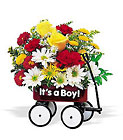 Teleflora's Baby's First Wagon from Designs by Dennis, florist in Kingfisher, OK